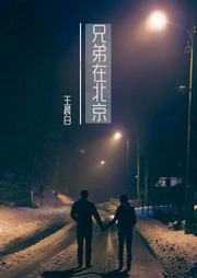 兄弟在北京有声小说